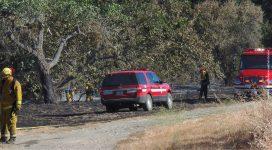 wildfirerecoveryprojectcredit